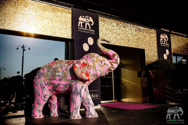 The Elephant Ball, TPWF